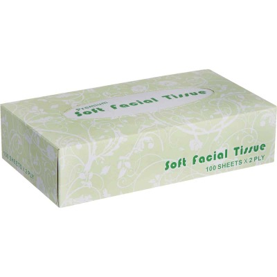 Windsoft 100 Count 2-Ply White Facial Tissue