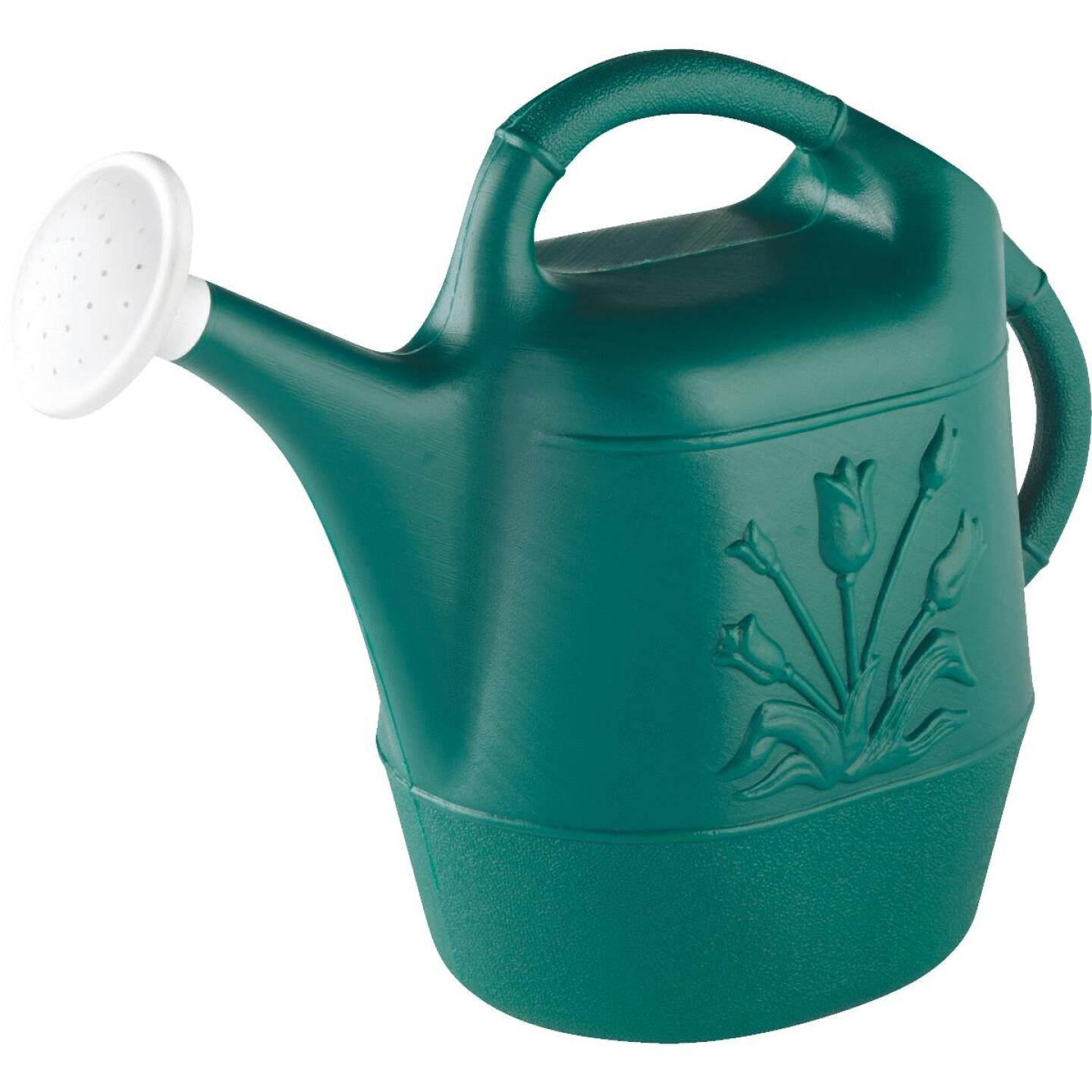 United Solutions 2 Gal. Hunter Green Poly Watering Can Image 3